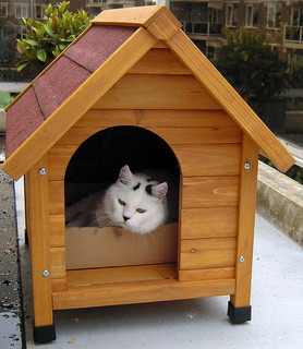 real estate investing with pets