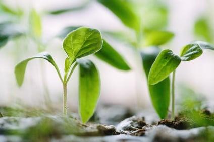 growingyourportfolio-investinginrealestate.jpg